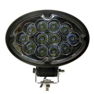 36W LED Ovale Werklamp Verstraler
